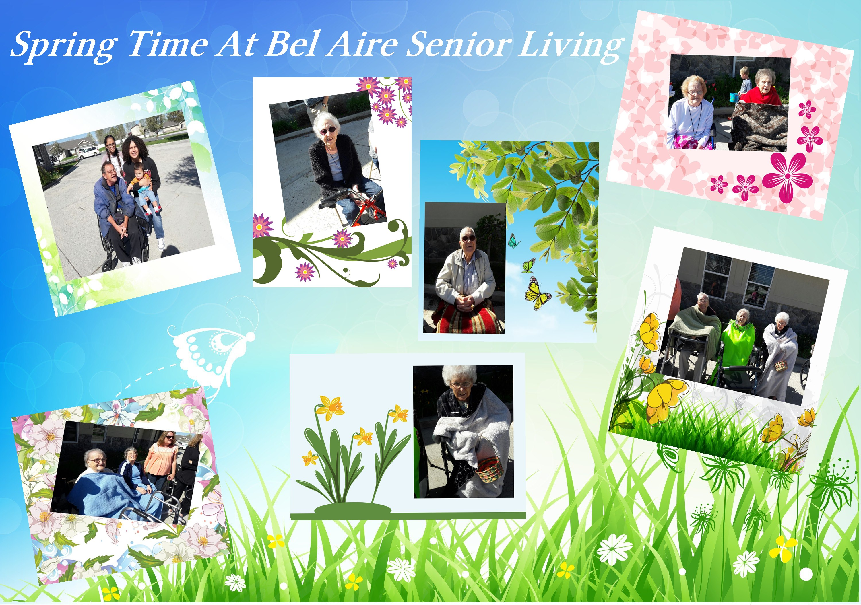 Spring Time At Bel Aire
