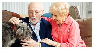 Seniors with pets