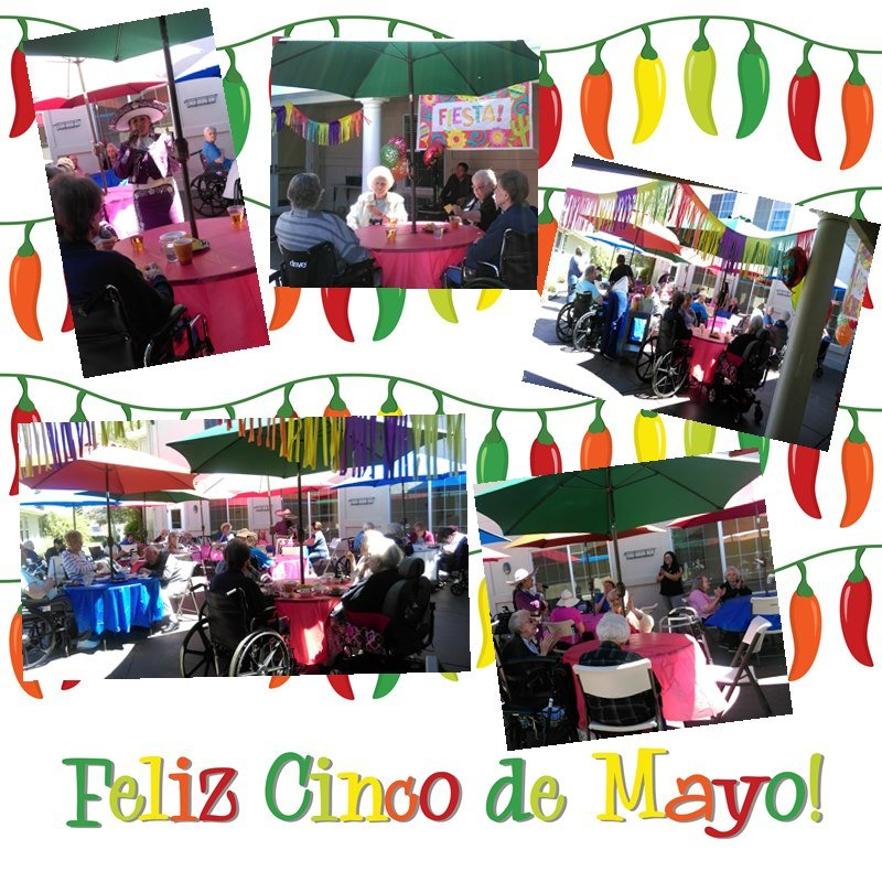 feliz-cinco-de-mayo-happy-5th-of-may-chilli-card-in-vector-format_M1eMmmou_L.jpg
